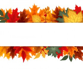Autumn leaves with white background vector