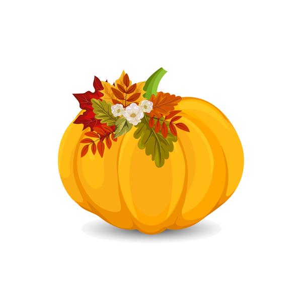 Autumn pumpkin with flower vectors