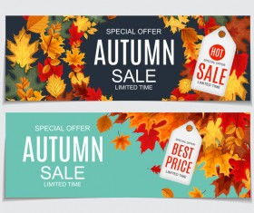 Autumn sale banners with tags vector 03