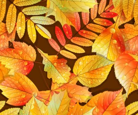 Beautiful autumn leaves with water drop seamless pattern vectors 01