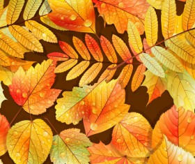 Beautiful autumn leaves with water drop seamless pattern vectors 02