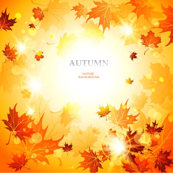 Beautiful autumn nature background vector 02
