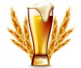 Beer with wheat vector material 02