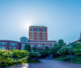 Campus landscape Stock Photo 13