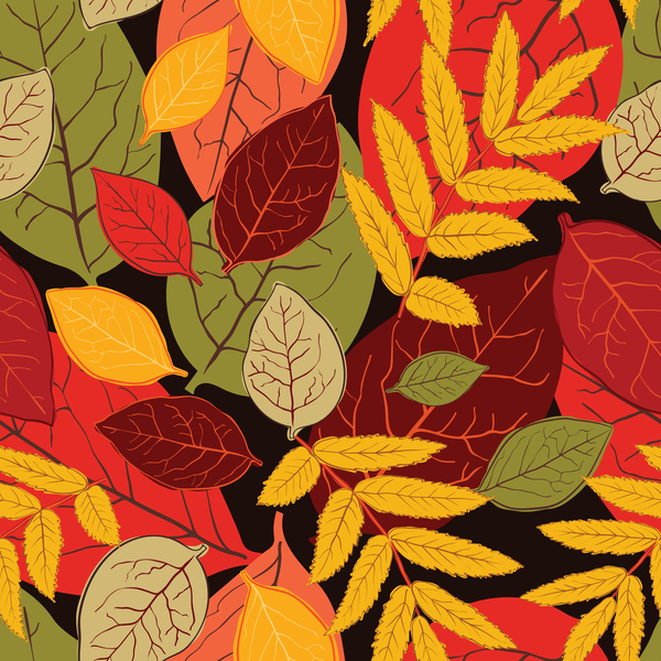 Colored autumn leaves seamless pattern vectors