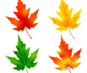 Colorful maple leaves vector material