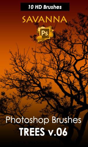 Creative Trees Photoshop Brushes