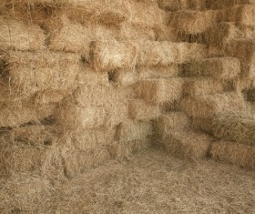 Farm haystack Stock Photo
