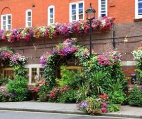 Flower rich restaurant Stock Photo