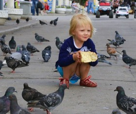 Girls who feed pigeons Stock Photo