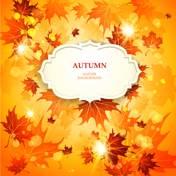 Gold autumn leaves background with white label vector