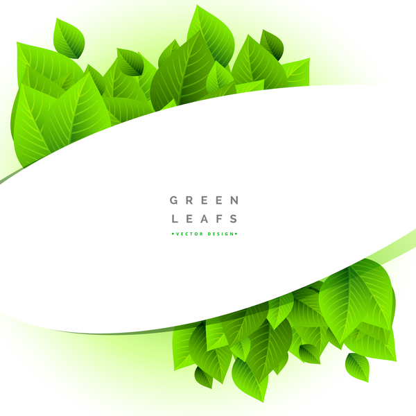 Green leaves with white background vector