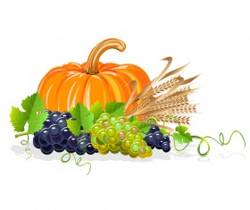 Harvesting still life vector illustration 03