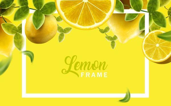Lemon with white frame vector