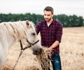 Man to feed the horse Stock Photo