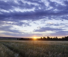 Morning sun and farmland Stock Photo