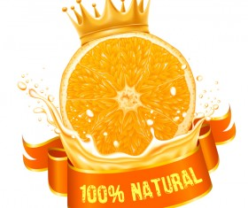 Natural orange juice labels vector