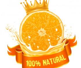 Natural orange juice labels vector