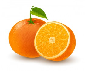 Orange fresh design vector