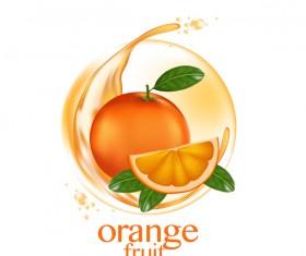 Orange fruit vector illustration 01