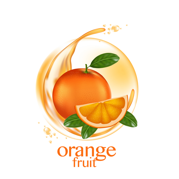 Orange fruit vector illustration 01