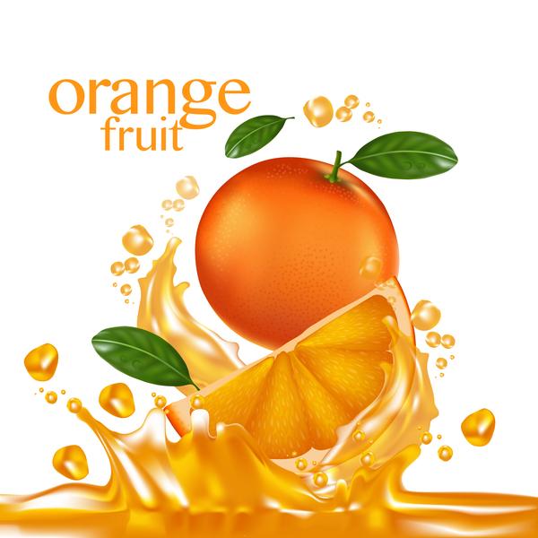 Orange fruit vector illustration 04