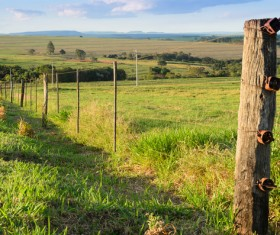 Pasture barbed iron fence Stock Photo 03