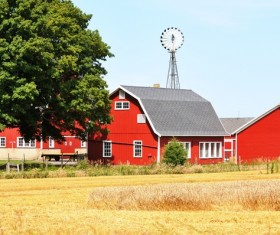 Red houses after large tracts of farmland Stock Photo