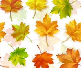 Seamless maple leaves pattern vectors
