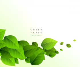 Vector green leaves background design 01