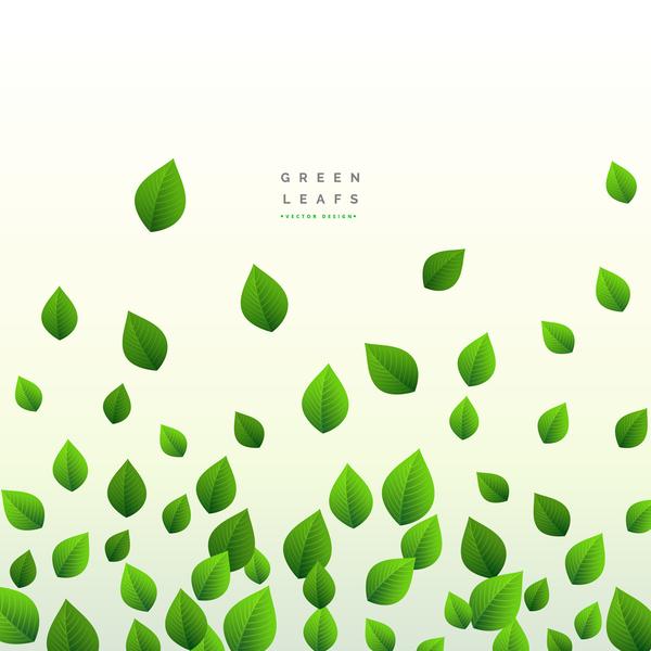 Vector green leaves background design 02
