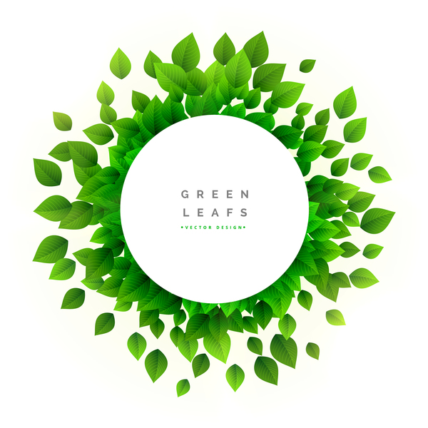White cricle frame with green leaves vector
