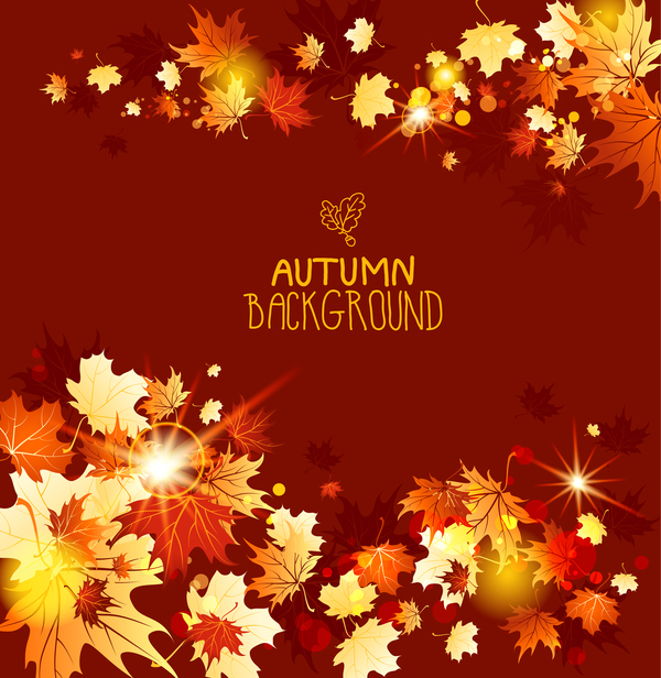 autumn leaves with red background vector