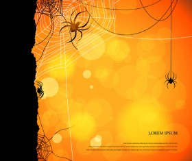 spider with night background vector