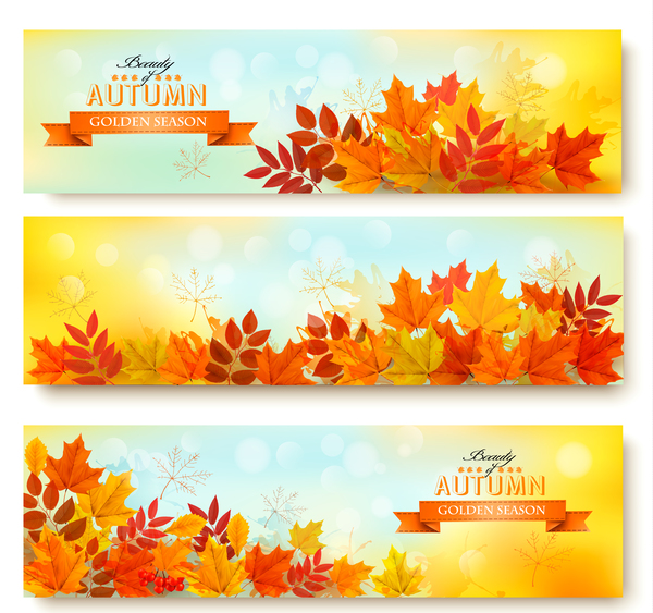 three nature autumn banners with leaves vector