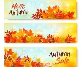 three sale autumn banners with leaves vector