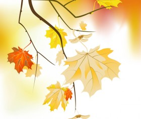 tree branches with gold autumn leaves vector