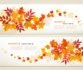 two autumn banners with colorful leaves vector
