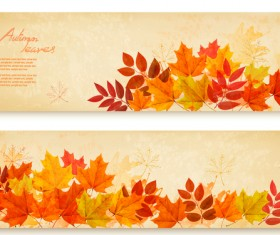 two retro autumn banners with leaves vector