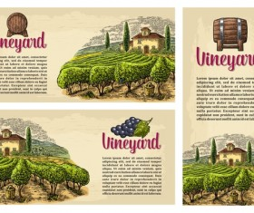 vineyard farm poster template vector 01