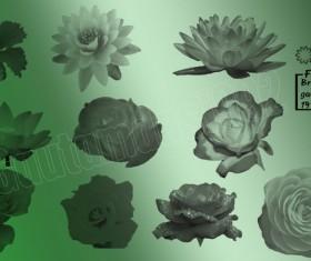 10 Kind Flowers Photoshop Brushes