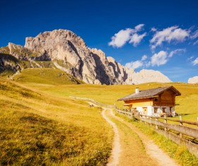 Alps mountain meadow landscape Stock Photo 11