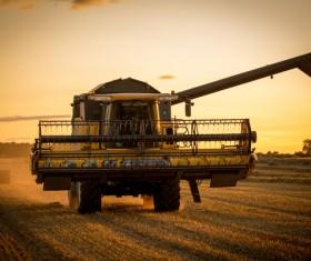 Autumn agricultural harvest Stock Photo 02