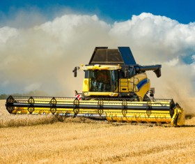 Autumn agricultural harvest Stock Photo 03