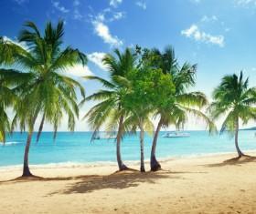 Beautiful ocean island Stock Photo 16