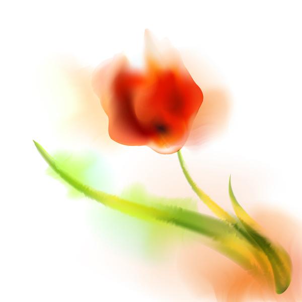 Blurs flower illustration vector 06