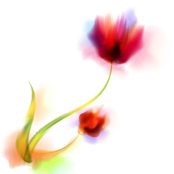 Blurs flower illustration vector 08