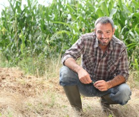 Farmers squatting in the fields Stock Photo
