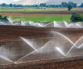 Field Irrigation System watering Stock Photo 02