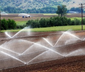 Field Irrigation System watering Stock Photo 03